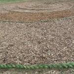 Spirale d Herbe
